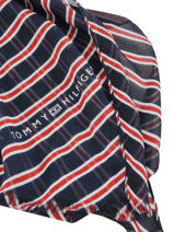 Damessjaal Tommy Tommy hilfiger Blauw accessoires AW07220-vue-porte