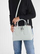 Longchamp Roseau Handtas Blauw-vue-porte