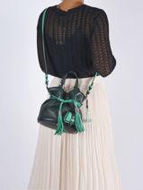 Bucket Bag Premier Flirt Leder Lancel Groen premier flirt A11754-vue-porte